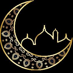 Discover Islam